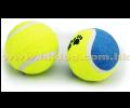 寵物網球三隻裝