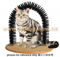 貓磨毛栱門