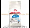 Royal Canin 偏向多食室內貓配方 2kg