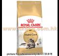 Royal Canin 緬因成貓配方 10kg