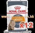 Royal Canin 肉汁貓濕包 美毛 85g x12包