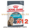 Royal Canin 肉汁貓濕包 尿道健康 85g x12包